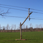 Broken-power-pole